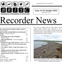 BRISC Recorder News 91