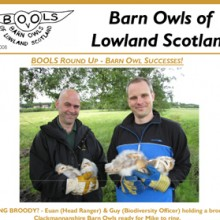 Barn Owls of Lowland Scotland Newsletter 2