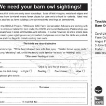 Have you seen a Barn Owl Postcard
