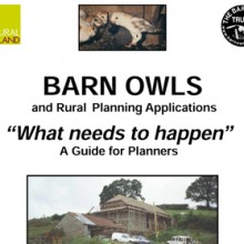 Rural Planning Applications Guide
