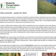 Small Blue Update 2014