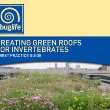 Creating Green Roofs