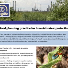 Good Planning Practice for Invertebrates