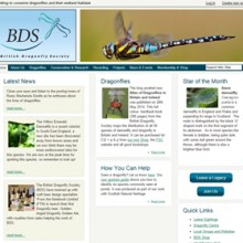 Dragonfly Hotspots – Morton Lochs Guided Walk