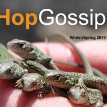Hop Gossip Winter/Spring 11/12
