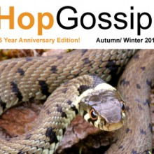 Hop Gossip Autumn/Winter 2014