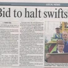 Halt Swifts' Decline