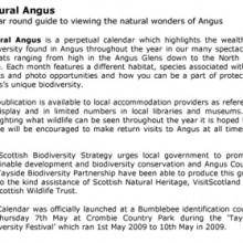Natural wonders of Angus