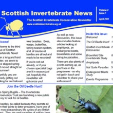 Scottish Invertebrate News April 2011