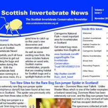 Scottish Invertebrate News Nov 2011