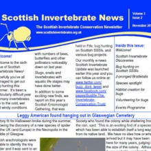 Scottish Invertebrate News Nov 2012
