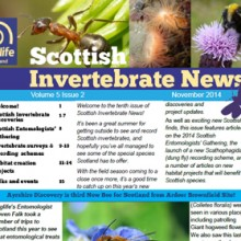 Scottish Invertebrate News Nov 2014