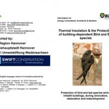 Swifts & Insulation