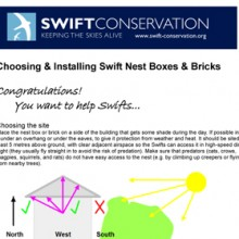 Installing Nest Boxes