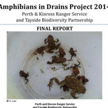 Amphibians in Drains Report 2014