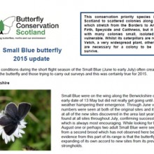 Small Blue Update 2015