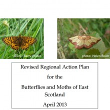 Butterfly Conservation – East of Scotland Action Plan for Butterflies and Moths