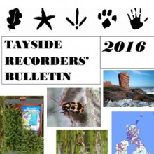 Tayside Recorders' Bulletin 2016