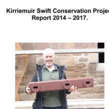 Kirriemuir Swift Conservation Report