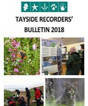 Tayside Recorders' Bulletin 2018