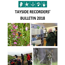 Tayside Recorders' Bulletin