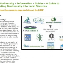 Incorporating Biodiversity into Local Services
