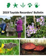 Tayside Recorders' Bulletin 2019