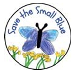 Small Blue Butterfly National Awards News